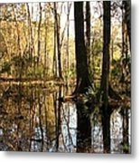 Friday Hill Reflections 1 Metal Print