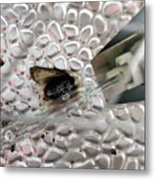 Fried Fly Metal Print