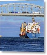 Frieda And Blue Water Bridge Metal Print