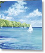 Friendship Bay Metal Print