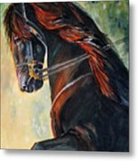 Friesian Sunset Metal Print