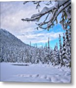 Frigid Beauty Metal Print