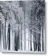 Frigid Forest Metal Print