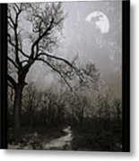 Frigid Moonlit Night Metal Print