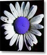 Fringe - Blue Flower Metal Print
