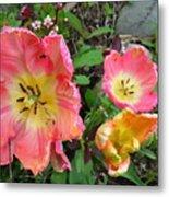 Fringed Tulips Metal Print
