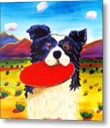 Frisbee Dog Metal Print by Harriet Peck Taylor