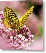 Fritillary Butterfly On Flowers Metal Print