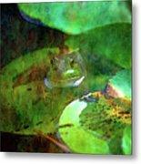 Frog And Lily Pad 3076 Idp_2 Metal Print