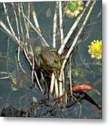 Frog On A Stick Metal Print