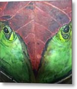 Frog With Leaf Metal Print