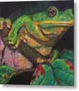 Froggie Metal Print