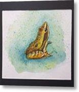 Frogs Of Borneo Ll Metal Print