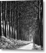 From Bruges To Dam Metal Print