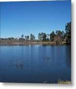 From The Bank Of The Lake In Eunice, Louisiana Metal Print