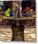 From The Fountain Metal Print