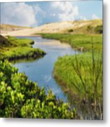 From The Sand Dunes To The Beach Metal Print