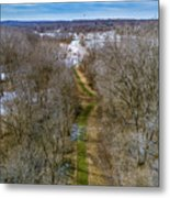 From Woods To Snow Metal Print