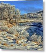 Frost Along The Creek Metal Print