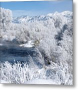 Frost Along The River Metal Print