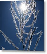 Frost Ice Crystals Metal Print