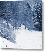 Frost Path Metal Print