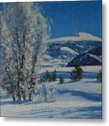 Frost Tapestry Metal Print
