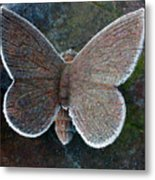 Frosted Butterfly Metal Print