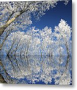 Frosted Dreams Metal Print