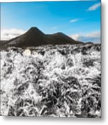 Frosted Over Hinterland Metal Print