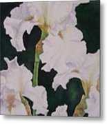 Frosted Pearl Iris Metal Print