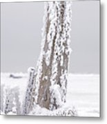 Frosted Tree Root Metal Print