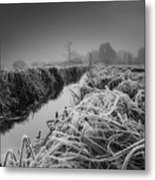 Frosty Field Metal Print