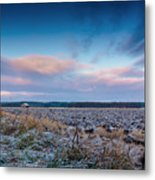 Frosty Fields Metal Print