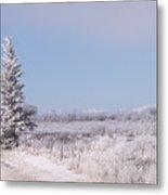 Frosty Landscape Metal Print
