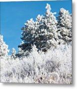 Frosty Mountainside Metal Print