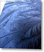 Frosty Palm Tree Fronds On Car Trunk Metal Print