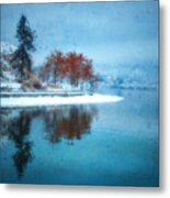 Frosty Reflection Metal Print
