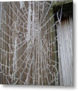 Frosty Web Metal Print