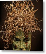 Frou-frou Metal Print by Adam Long