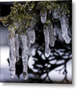 Frozen 4 Metal Print