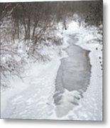 Frozen Brook Metal Print