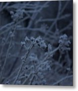 Frozen Buds Metal Print