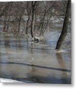Frozen Floodwaters Metal Print