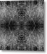 Frozen Grass Abstract In Bw Metal Print