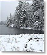 Frozen Lake 2 Metal Print