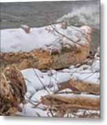 Frozen Land Metal Print