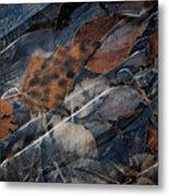 Frozen Leaves In Fall Metal Print
