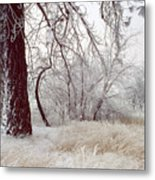 Frozen Morning In Palouse Metal Print