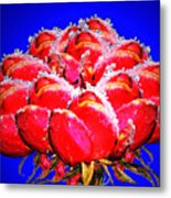 Frozen Roses Metal Print